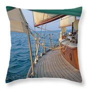 On The Beam Throw Pillow
