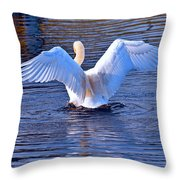 On The Blue Side  Throw Pillow