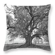 On The Delta Monochrome Throw Pillow