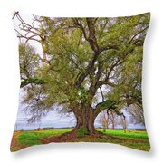 On The Delta Throw Pillow