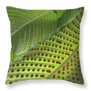 On The Dotted Lines Throw Pillow