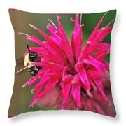 On The Edge Of Petals Throw Pillow