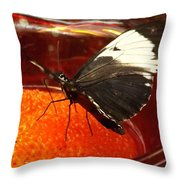 On The Fruit Throw Pillow