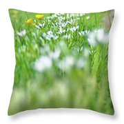 On The Garden Path Throw Pillow