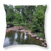 On The Grounds At Cryastal Bridges Throw Pillow