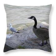 On The Lakefront Throw Pillow