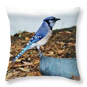 On The Look Out  Throw Pillow