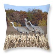On The March . . . Throw Pillow