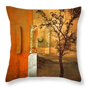 On The Other Side Of The Door Throw Pillow