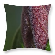 On The Path To Bloom Throw Pillow