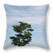 On The Prairie Throw Pillow