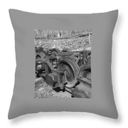 On The Quincey Rails  Throw Pillow