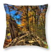 On The Rail Throw Pillow