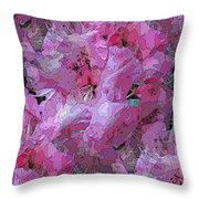 On The Rhody Again Throw Pillow