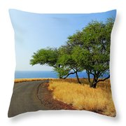 On The Road To Lapakahi Throw Pillow