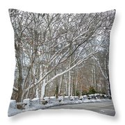 On The Road To Woods Hole Throw Pillow