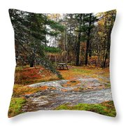 Picnic On The Rocks Throw Pillow