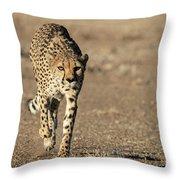 On The Run  Throw Pillow