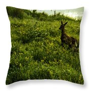 Among The Golden Rod Throw Pillow