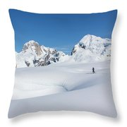 On The Ruth Glacier Throw Pillow