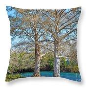 On The San Marcos River Texas Throw Pillow
