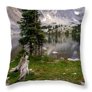 On The Snowy Mountain Loop Throw Pillow
