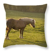 On The Sunny Meadow Throw Pillow