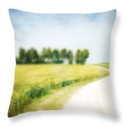 On The Way Through The Summer Throw Pillow