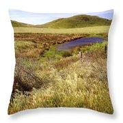 On The Way To Abbotts Lagoon Throw Pillow