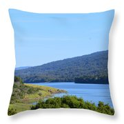 On The Way To Half Moon Bay Throw Pillow