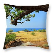 On The Way To Lapakahi Throw Pillow