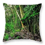 On The Way To Lava Tree Aloha Throw Pillow