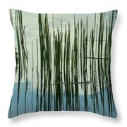 On The Way To Tractor Supply 3 1 Throw Pillow