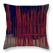On The Way To Tractor Supply 3 25 Throw Pillow