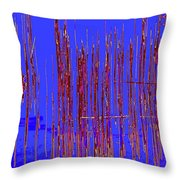 On The Way To Tractor Supply 3 31 Throw Pillow