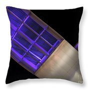 On The Wings Of The Night Throw Pillow