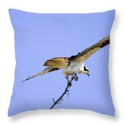 On To The Nest Throw Pillow