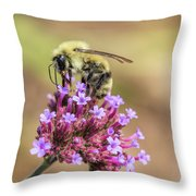 On Top Of The World - Bee Style Throw Pillow