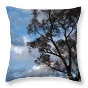 On Winds Of Evening Throw Pillow