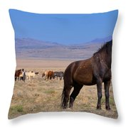 Onaqui Sentinel Throw Pillow