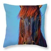 Onaqui Wild Stallion Portrait Throw Pillow