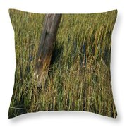 Once A Port Throw Pillow