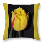 Once Again Spring Throw Pillow