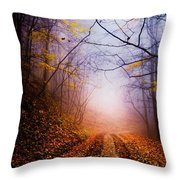 Once In A Blue Moon Throw Pillow by Debra and Dave Vanderlaan
