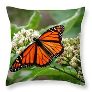 Once Upon A Butterfly 001 Throw Pillow