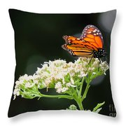 Once Upon A Butterfly 005 Throw Pillow