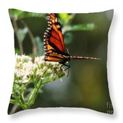 Once Upon A Butterfly 006 Throw Pillow
