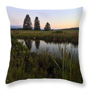 Once Upon A Time... Throw Pillow by LeeAnn Kendall