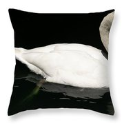 Once Upon Reflection Throw Pillow