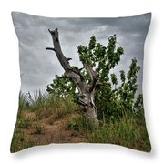 Once Was 10633 Throw Pillow